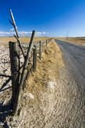 Long asphalt road on vast dry land Stock Photos