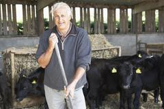 Farmer In Barn With Herd Of Cows - stock photo