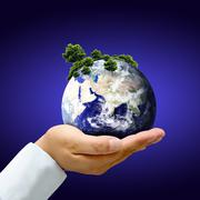 Earth with tree in hand Stock Photos