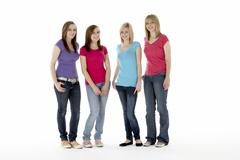 Group Of Teenage Girlfriends - stock photo