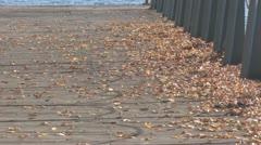 Autumn Alley Stock Footage