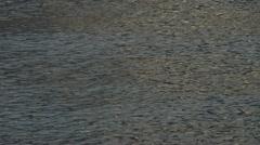 Ripple Waves Texture 1 Stock Footage