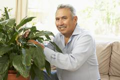 Senior Man At Home Looking After Houseplant Stock Photos