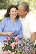 Senior Couple Gardening Together Stock Photos