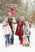 Perhe Walking Through Snowy Woodland Kuvituskuvat