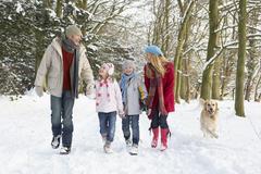 Family Walking Dog Through Snowy Woodland Stock Photos