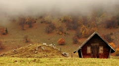 Autumn Landscapes Pack - stock footage