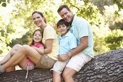 Family Sitting On Tree In Park Stock Photos