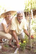 Senior Couple Relaxing In Garden - stock photo