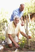 Senior Man And Adult Son Relaxing In Garden - stock photo
