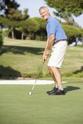 Senior Male Golfer On Golf Course Putting On Green Stock Photos