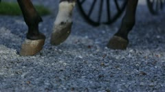 Close up horse hooves - stock footage