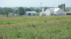 Farmhouses in grass Stock Footage