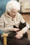 Senior Woman Relaxing In Chair At Home With Pet Cat - stock photo
