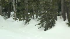 Mt. Washington B.C. Canada. Man snow shoeing. Stock Footage