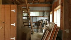 Horse Stalls Stock Footage