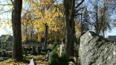 Kid child red walk old rural cemetery graveyard autumn Stock Footage