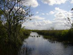 Canal in Florida's Everglades - stock photo