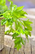parsley in braided basket isolated - stock photo