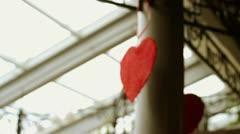 Heart rotates Stock Footage