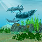 Delfiiniriutta Piirros
