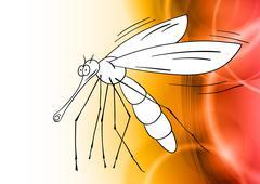 white gnat - stock illustration