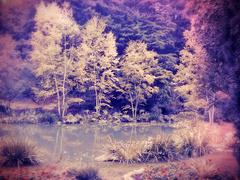 lomo infrared trees and pond - stock photo