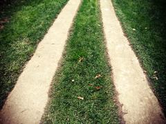 lomo road with lawn - stock photo