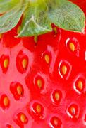 strawberry closeup detail - stock photo
