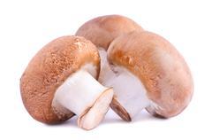Brown champignons Stock Photos