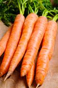 Bunch of natural carrots Stock Photos