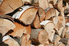 Cordwood Pile - stock photo