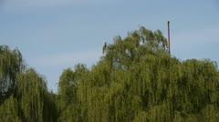 BeiJing BeiHai Park White Tower&Tibetan Buddhism.willow branches in breeze wind Stock Footage