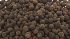 Allspice zoom in Stock Footage