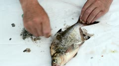 Speed up fisherman hand with knife clean bream fish scales guts Stock Footage