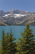 Stock Photo of bow lake, icefields parkway, alberta, canada