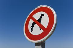 Stock Photo of no dogs allowed sign, france