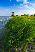 landscape from usedom island - stock photo