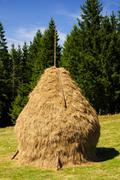 Stock Photo of traditional hay stack in romania