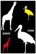 Giraffe and stork Stock Illustration