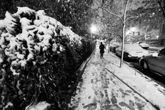 Lone woman walking on the snow covered pavement of a harlem street on a freez Stock Photos