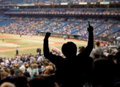 Baseball fan celebration Stock Photos