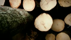 logs forest industry spruce - stock footage