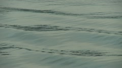 Waves - stock footage