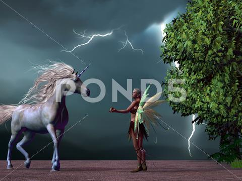 Stock Illustration of fairy and unicorn