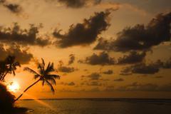 Stock Photo of beach tree break calm caribbean desire dream