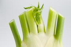 food fruit fennel green health salad side dish - stock photo