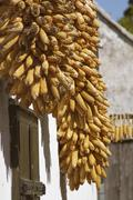 food house product animal corncob farm holidays - stock photo