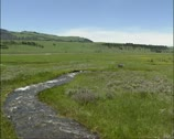 Stock Video Footage of Creek, meltwater streaming in pasture, Lamar Valley