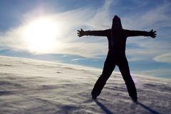 winter silhoutte - stock photo